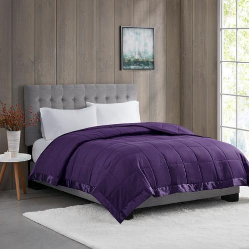 Year Round Purple Microfiber Down Alternative Blanket w/3M Scotchgard (Windom-Purple)