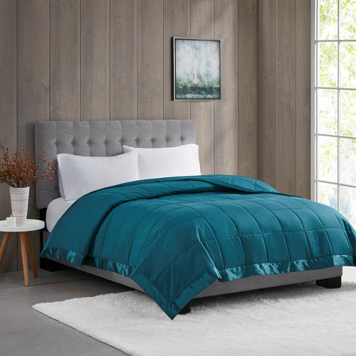 Year Round Teal Blue Microfiber Down Alternative Blanket w/3M Scotchgard (Windom-Teal)