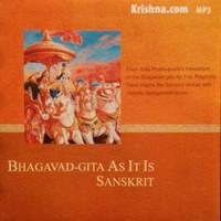 Sanskrit Bhagavad-gita Grammar, Volume 3 - Krishna com Store