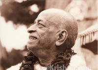 "Srila Prabhupada Sepia Photo, Portrait, Smiling, 8""x10"""