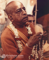 "Srila Prabhupada Photo, Boston, Chanting on Initiate's Beads, 16""x20"""