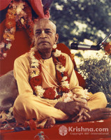 "Srila Prabhupada Photo, Red Vyasasana, 8""x10"""