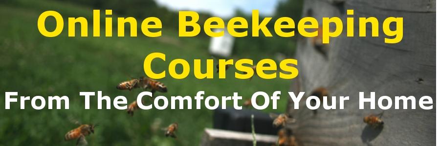 Online Beekeeping Courses