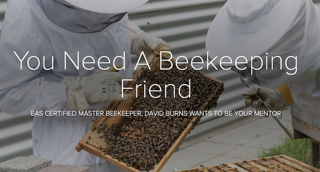 Beekeeping Mentorship Program
