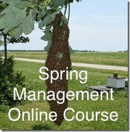 Online Spring Management Course- ONLINE
