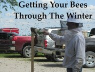 Online Getting Your Bees Through The Winter Course- ONLINE