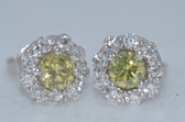 14k Fancy Yellow Diamond Earrings - EK17