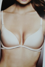 Fine Lines Refined Collection Extreme Plunge Bra