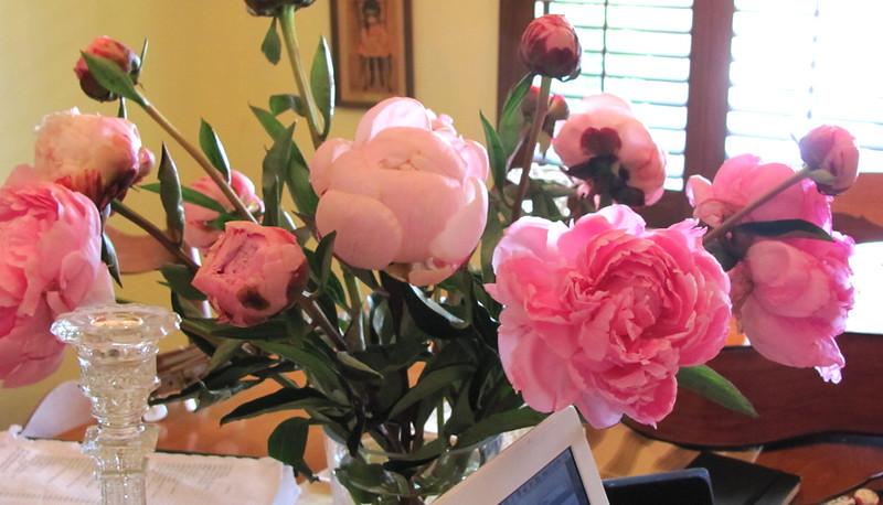 ดอกไม้ตกแต่งบ้าน ความหมายดีงามตามหลักฮวงจุ้ย