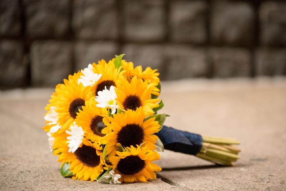 falling-sunflower.jpg