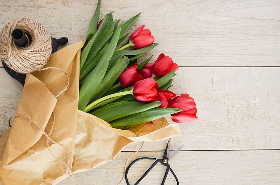 falling-tulip.jpg