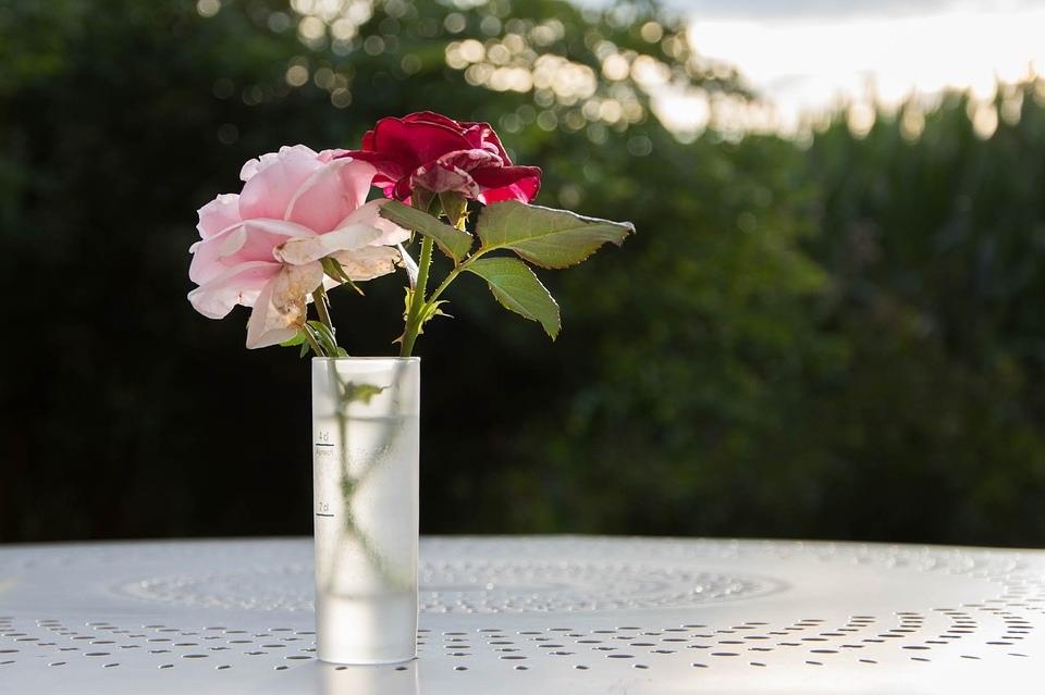 flower-life01.jpg