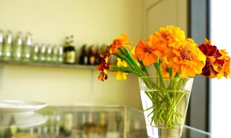 ประโยชน์ของดอกไม้ที่มีมากกว่าความสวย