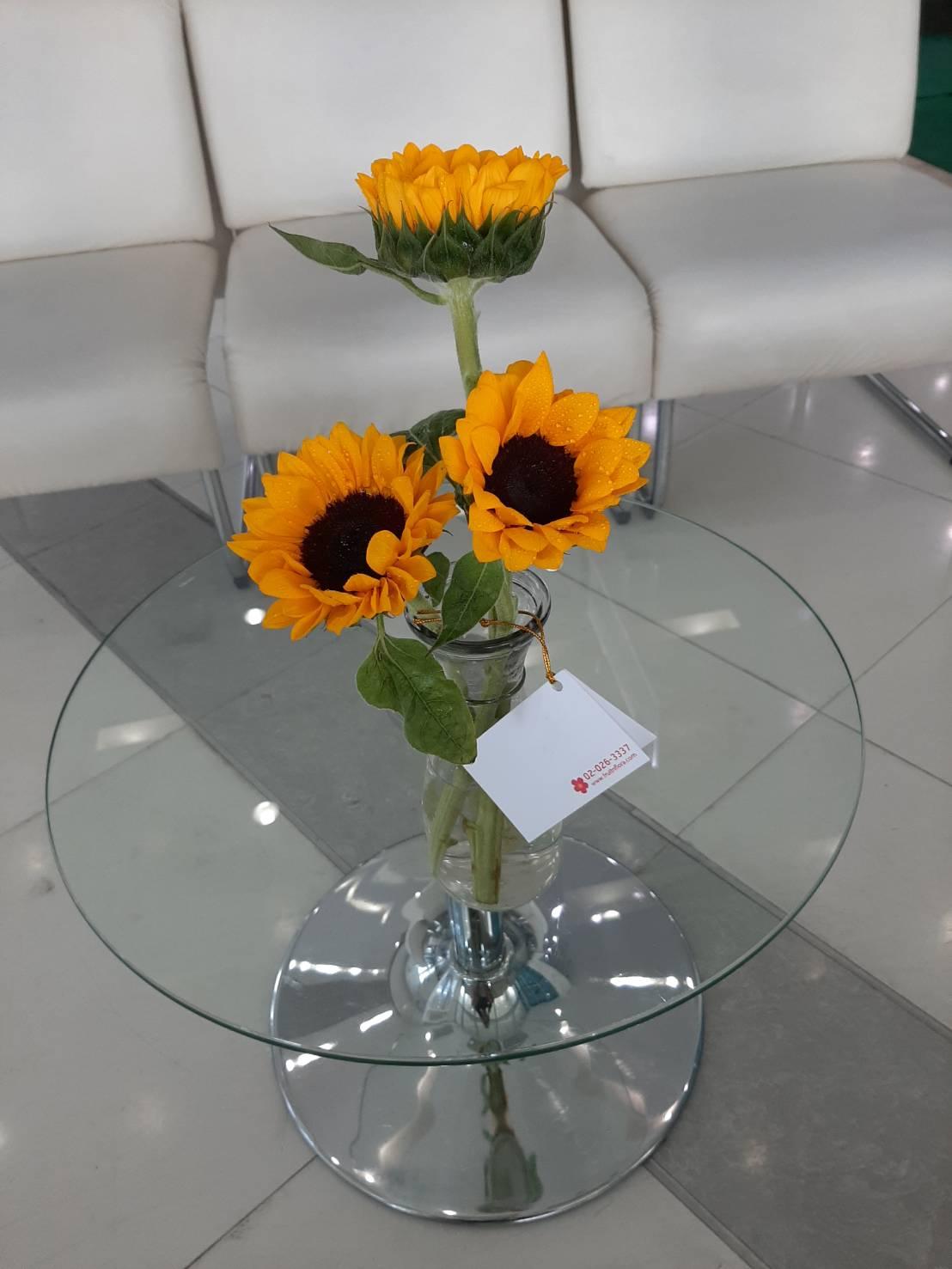 ดอกทานตะวันสีเหลืองสวย ปักใส่แจกันดอกไม้ทรงเก๋ เข้ากันจริง ๆ นะคะ