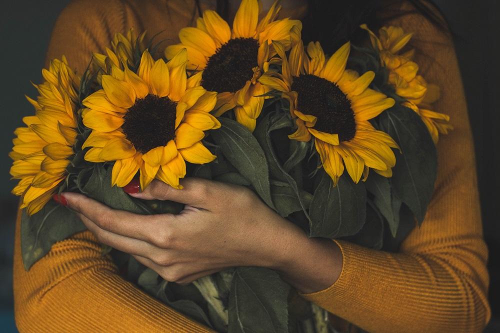 ประโยชน์ของดอกไม้ - ดอกทานตะวันให้กำลังใจ