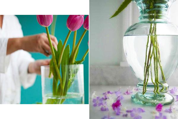 การนำดอกไม้ไปแช่น้ำเพื่อรักษาความสดใหม่