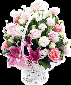 ดอกไม้ในกระเช้าสีขาว
