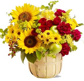 ดอกไม้โทนสีเหลืองแดงในกระเช้า