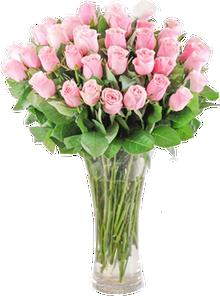 แจกันดอกกุหลาบสีชมพู ขนาดใหญ่