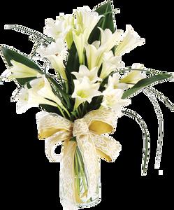 แจกันดอกลิลลี่สีขาว ริบบิ้นสีทอง