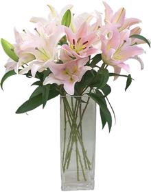 แจกันดอกลิลี่ สีขาวอมชมพู
