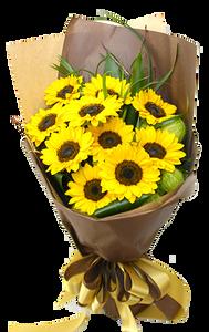 ช่อดอกทานตะวัน 10ดอก ขนาดใหญ่