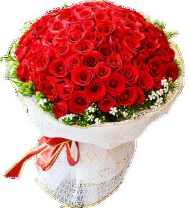 ช่อดอกกุหลาบสีแดงสด ขนาดใหญ่มาก 150ดอก
