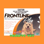 Frontline Plus Flea & Tick for Dogs up to 22 lbs (6 Months)