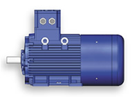 cemp-atex-motor.jpg