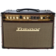 TRAYNOR AM STUDIO Acoustic Masters Series Guitar / Vocal Combo Amplifier