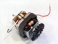 Motor Assembly Complete (120V)