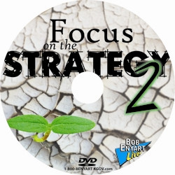 Focus on the Strategy II