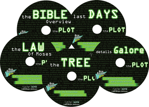 Bob Enyart's audio series on The Plot: An overview of the Bible