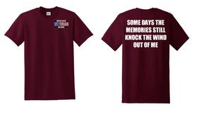 US Air Force Veteran Cotton T-Shirt -Wind-(P)