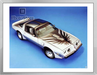 1979 Pontiac Firebird Trans Am Coupe  Framed Print