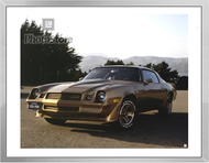 1981 Chevrolet Camaro Z28 Coupe Framed Print
