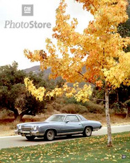 1973 Chevrolet Monte Carlo Coupe Poster