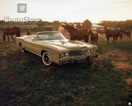 1976 Cadillac Eldorado Convertible Poster
