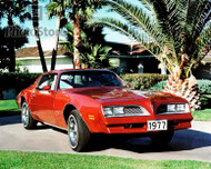 1977 Pontiac Firebird Esprit Coupe Poster