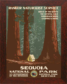 Sequoia National Park Framed Poster