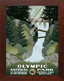 Olympic National Park Framed Poster