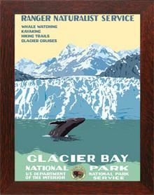 Glacier Bay National Park Framed Poster