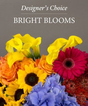 Designers Choice Bright Blooms