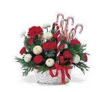 Candyland Bouquet