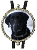 Black Lab in the snow Bolo Tie