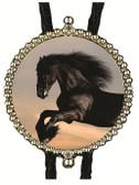 Black Stallion Horse (2) Bolo Tie