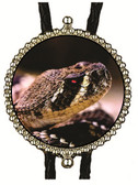 Rattlesnake Head Image Bolo Tie