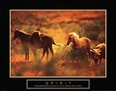 Spirit - Horses