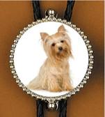 Yorkshire Terrier (1) Bolo Tie