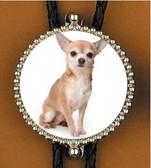 Chihuahua Bolo Tie